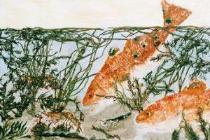 Redfish In Pursuit