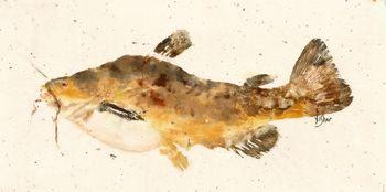 Butter Catfish