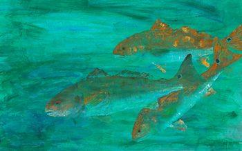 Deepwater Reds